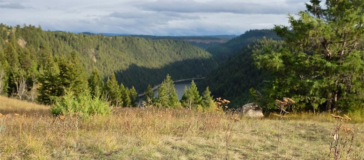 Vidette Lake Nature Retreat